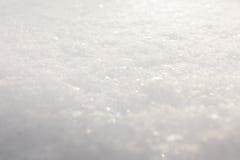 powszechny świeży śnieg Obraz Royalty Free