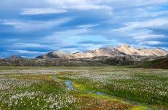 Powulkaniczne góry Landmannalaugar w Fjallabak rezerwacie przyrody Zdjęcie Royalty Free