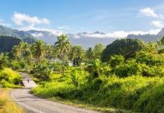 Powulkaniczni wzgórza, góry, doliny, wulkanu piękna zielona bujny Ovalau wyspa przerastająca z palmami usta, gubić w dżungli druc fotografia royalty free