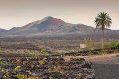 powulkaniczny krajobrazowy Lanzarote Zdjęcia Stock