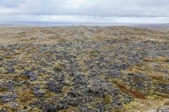 Powulkaniczny pole przy Snaefellsnes linią brzegową Zdjęcie Royalty Free