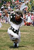 Powwow Grass Dancer Stock Photos