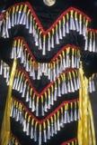 Powwow indiano dell'nativo americano Fotografie Stock
