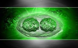 Pox virus royalty-vrije illustratie