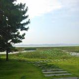 Poyang jezioro Obrazy Royalty Free