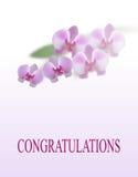 2007 pozdrowienia karty szczęśliwych nowego roku Piękni purpurowi orchidea kwiaty, liście i pojedynczy białe tło ilustracja ilustracja wektor