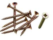 Pozidriv head screws. Royalty Free Stock Images