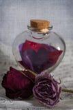 Pozione di amore Fotografia Stock Libera da Diritti