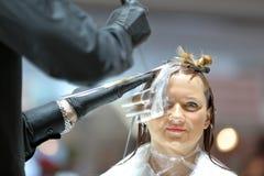 POZNAŃSKI, POLSKA, MAJ - 07 2016: fryzjer farby klienta włosy a Obraz Royalty Free