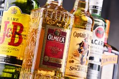 Bottles of assorted global hard liquor brands Royalty Free Stock Photos