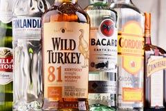 Bottles of assorted global hard liquor brands Royalty Free Stock Photo