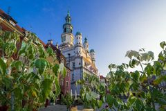 Poznan Town Hall from behind the leaves in the Old Market. royalty free stock image