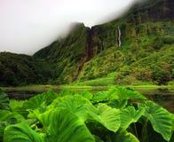 Pozo DA Alagoinha sur l'île de Flores Photographie stock libre de droits