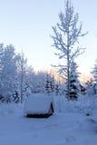 Pozo del invierno imagenes de archivo