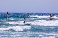 Windsurfing on Gran Canaria. Stock Photography