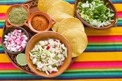 Pozole gjorde mexicansk havresoppa, traditionell mat i Mexico med havrekorn royaltyfri foto