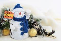 pozwalać śnieg Fotografia Royalty Free