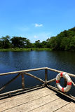 Pozwalać pływanie w lecie Zdjęcie Stock