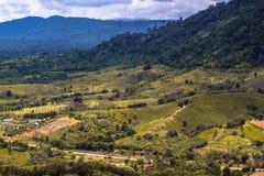 pozwolić gałąź chmurny szmaragd folującego zieleni krajobraz halni otwarcia przepustki deszcze rzeczny sezonu nieba słońce biorą  Fotografia Stock