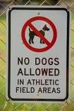 pozwolić psy żadny znak Obraz Royalty Free