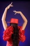 pozy tylny spanish zdjęcie royalty free