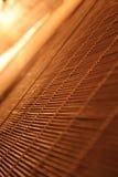 pozyskiwania pomarańcze Obraz Stock