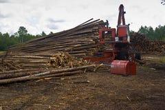 pozyskiwanie drewna dźwigowa Fotografia Stock