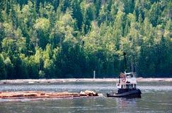 pozyskiwanie drewna przybrzeżna Zdjęcie Stock