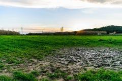 Pozza di fango bagnata nel campo e nel tramonto Fotografia Stock