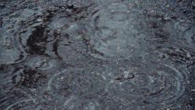 Pozza sulla pavimentazione nella pioggia Le gocce cadono nell'acqua e divergono cerchi Interferenza delle onde Pioggia di aprile  archivi video