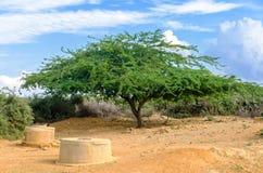 Pozzi del deserto Fotografie Stock Libere da Diritti
