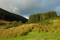 Pozzi di Llanwrtyd, montagne Fotografia Stock Libera da Diritti