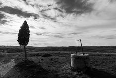 Pozzo d'acqua ed albero fotografia stock libera da diritti