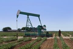 Pozzo di petrolio del Texas Fotografia Stock Libera da Diritti