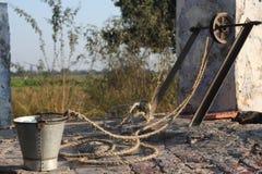 Pozzo e secchio con la corda Fotografia Stock