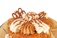 аppetizing fruitcake with a cream close up Stock Photography