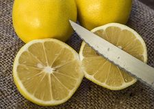 PPhotos do limão com a faca em assoalhos de madeira, metade de um limão do mão-corte, dividindo um limão em duas porções iguais,  Imagem de Stock