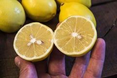 PPhotos do limão com a faca em assoalhos de madeira, metade de um limão do mão-corte, dividindo um limão em duas porções iguais,  Imagem de Stock Royalty Free