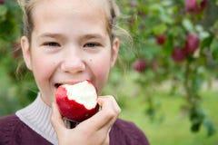 äpple som äter flickan Arkivfoto