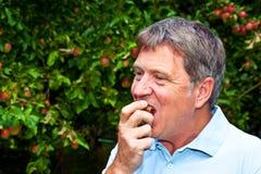 äpple som äter mannen Arkivfoton