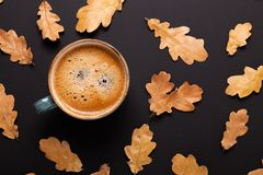 ?ppleh?sten unders?ker torra leafs f?r sammans?ttning som plundrar vasen Koppen kaffe och torkar sidor p? svart bakgrund arkivbilder