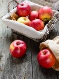 Äpplen i korg Arkivbilder