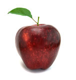 äpplered Arkivfoto