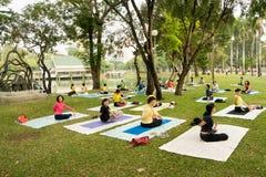 Práctica de la yoga del grupo en parque imágenes de archivo libres de regalías