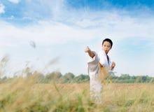 Prática asiática taekwondo do menino Fotos de Stock
