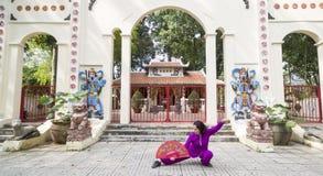 Prática de Tai Chi Fotografia de Stock Royalty Free