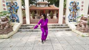 Prática de Tai Chi Imagem de Stock