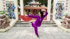 Prática de Tai Chi fotos de stock royalty free
