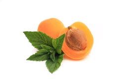 Prägen Sie, die Aprikose, die zur Hälfte auf Weiß geschnitten wird Stockfotos