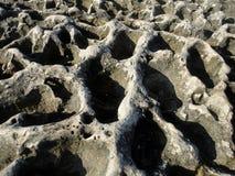 Präglad textur av stenen Royaltyfria Foton